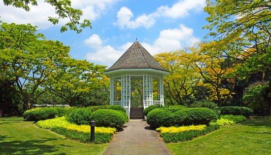 Botanic Gardens Home Personal Trainer Singapore MyFitnessComrade